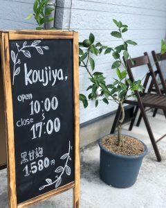福岡県 古賀市 麹家 麹 米麹 黒麹 発酵
