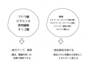 麹 黒甘麹 麹菌 米麹 発酵 酵素 食物繊維